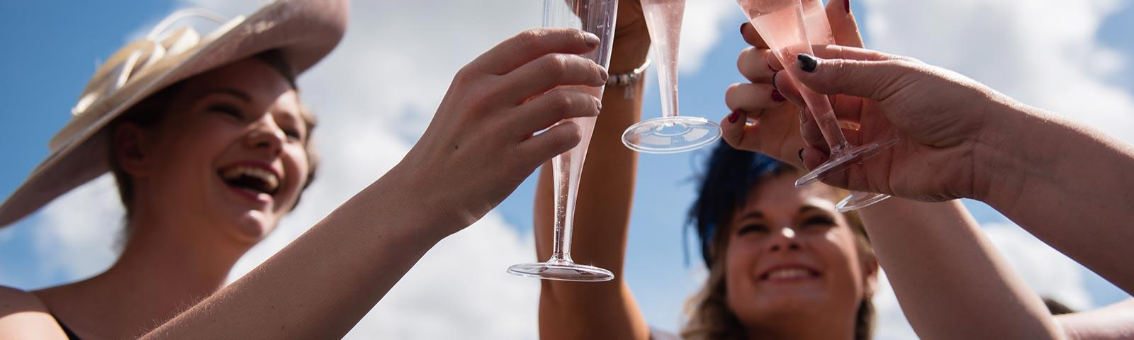 A group of friends raise their glasses of pink Champagne